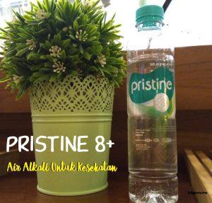 Minum Air Alkali Pristine 8+